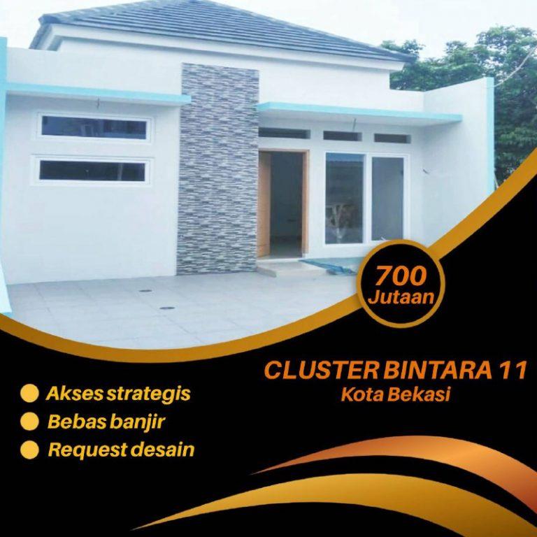 Cluster 11 Bintara 2